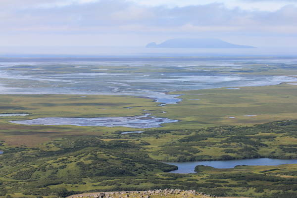 Wetlands offer a mosaic of color in the Izembek National Wildlife Refuge in Alaska. (Kristine Sowl/U.S. Fish and Wildlife Service)