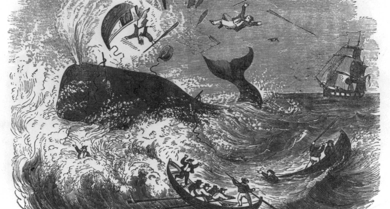 """""""Perilous situation of whalemen,"""" wood engraving, 1861. (Library of Congress Prints and Photographs Division Washington, D.C.)"""